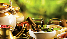 Ayurveda Packages in Wayanad