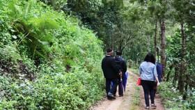 Munnar Trekking
