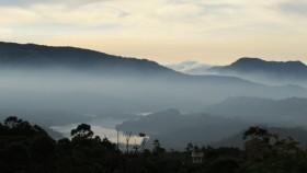 Munnar Scenery