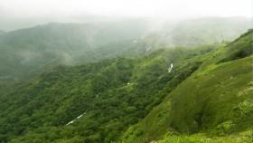 Waterfalls near thekkady