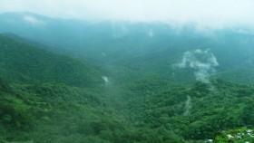 Misty thekkady hills