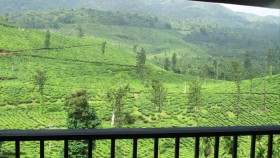 Wayanad Hills