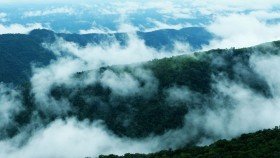 Misty Vagamon
