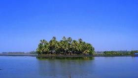 Kumbalangi village