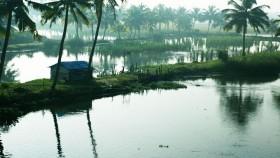 Cochin/Ernakulam Photos