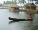 Kollam Backwater Package
