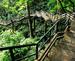 Explore Thenmala
