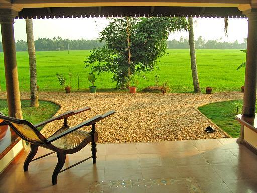Honeymoon In Kerala Enjoy The Mesmerizing Bliss Of Natural Beauty Of Thekkady