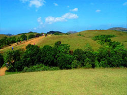 vagamon farm tourism