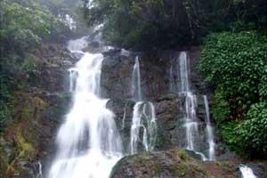 Murinjupuzha Water Falls