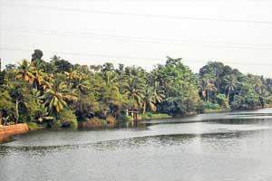 Achankovil river konni