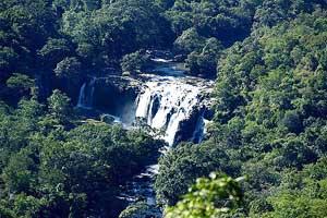 Thoovanam waterfalls Marayoor