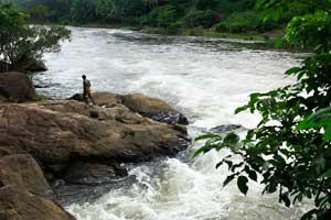 Peruthenaruvi Waterfalls Pathanamthitta