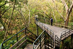 Thenmala Eco Tourism Centre