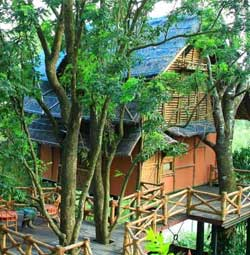 Bamboo Green Gates Treehouse wayanad