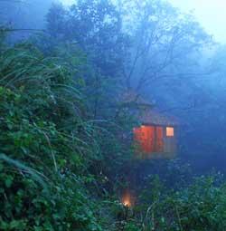 Vanya Treehouse Thekkady