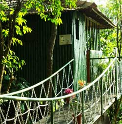 Cybele Treehouse  Wayanad