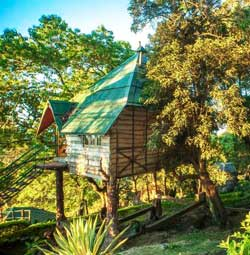 Great Escape Treehouse Munnar